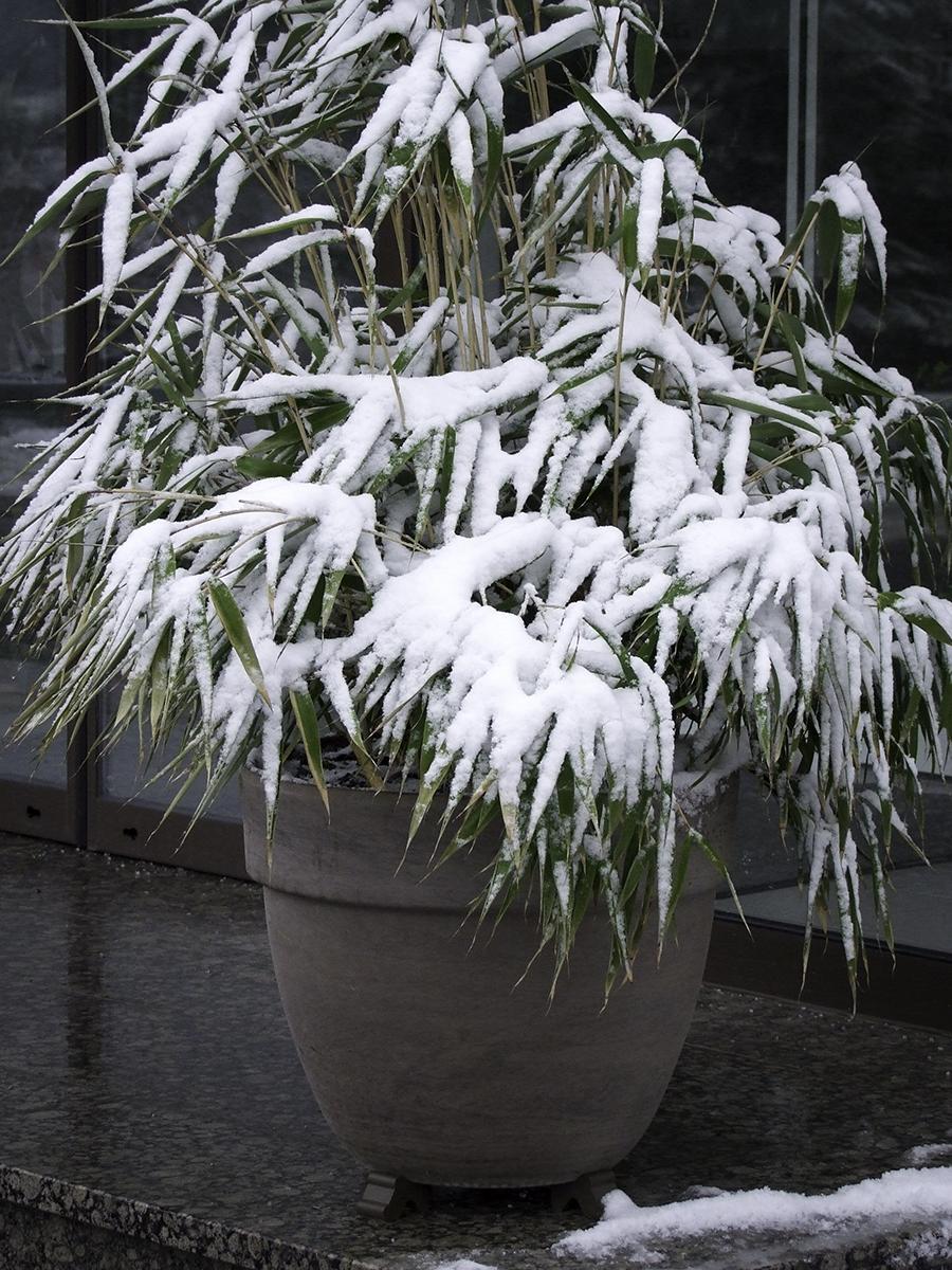 Frostbeständigkeit